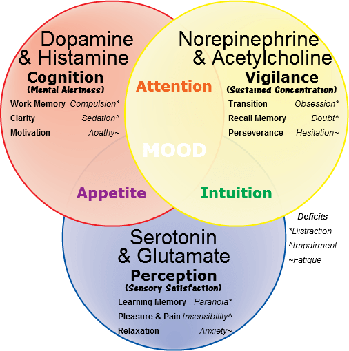 Neurotransmitters-Balance
