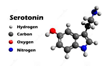 serotonin-d-structure-hormone-contributes-to-feeling-happines-white-background-47941654