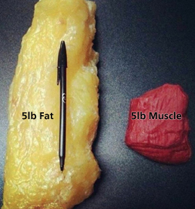 5-pounds-of-fat-5-pounds-of-muscle